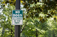 No Dogs Allowed in Park