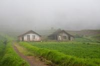 Misty Farm Houses
