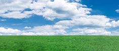 Panoramic spring landscape  60 MPix XXXXL size