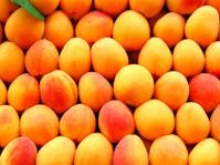 Apricots_11