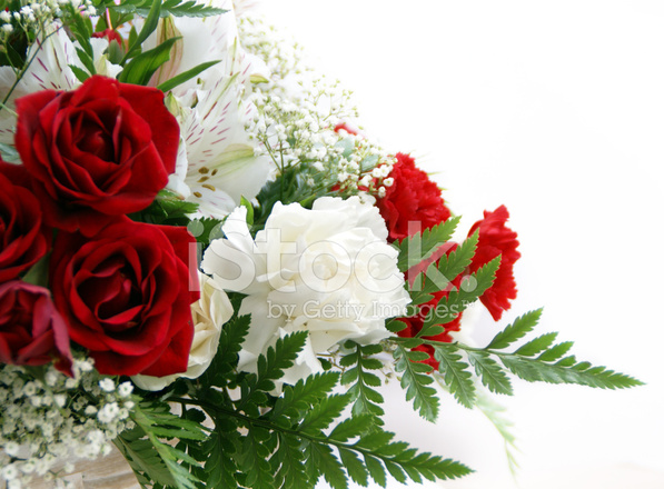 Red and white floral arrangement stock photos freeimages