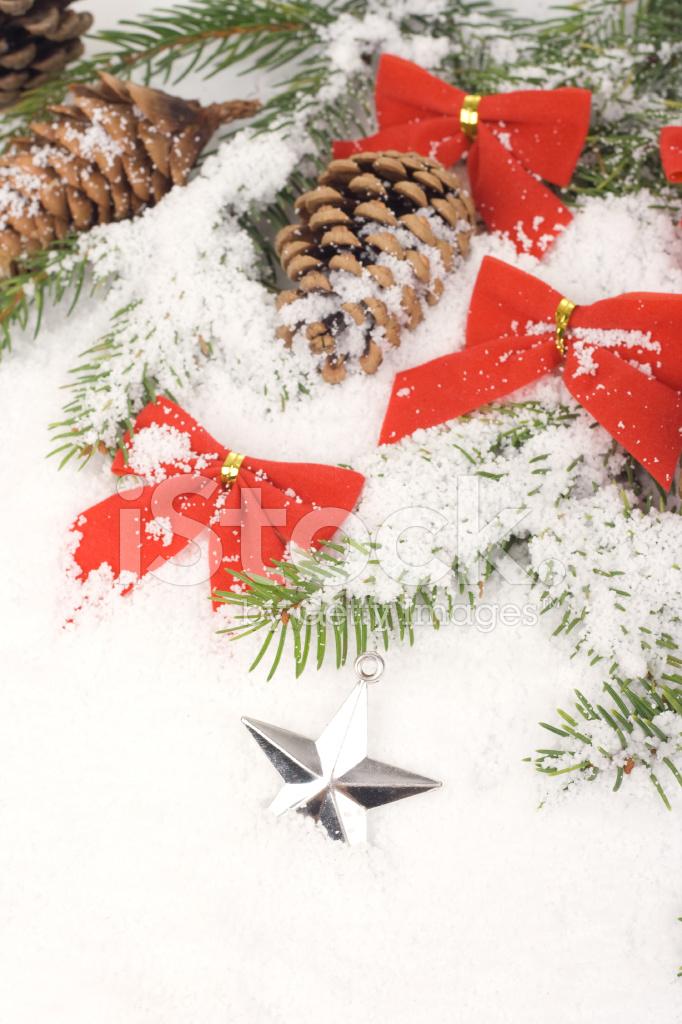 Foto Con La Neve Di Natale.Stella Di Natale Nella Neve Fotografie Stock Freeimages Com
