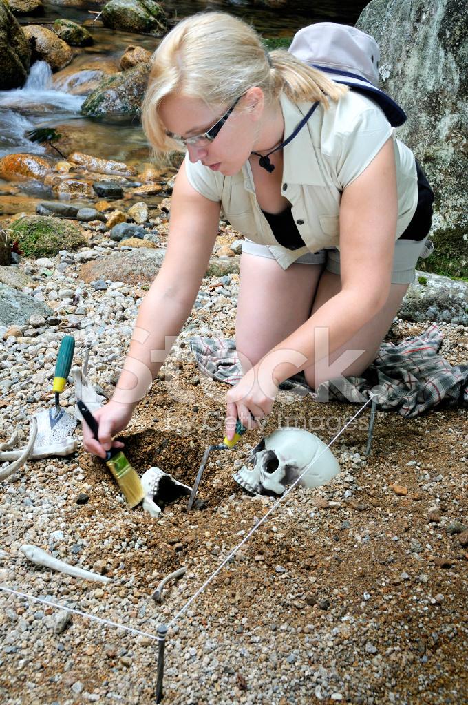 Female Archaeologist Hard At Work Stock Photos