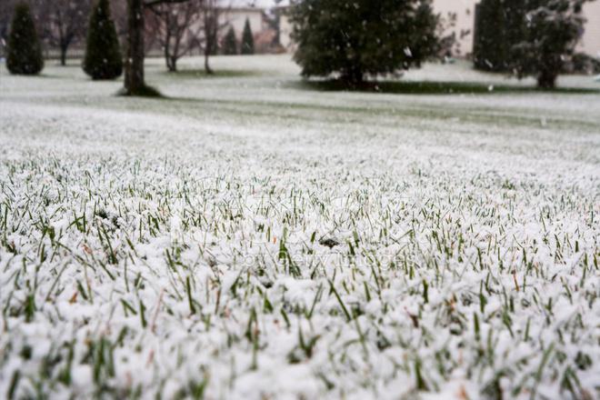 روش های نظافت چمن مصنوعی در زمستان