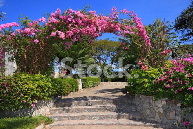 Flower Arc In Thailand Garden