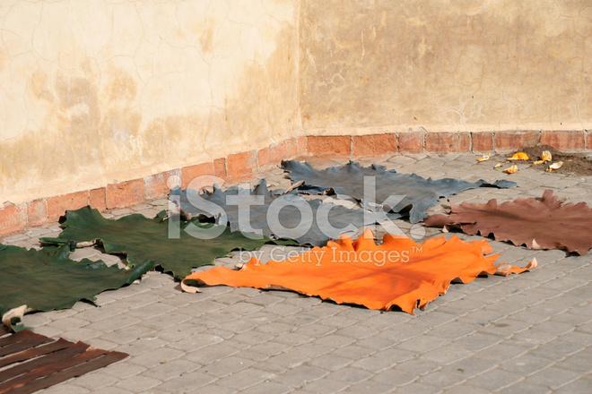 tanning yard stock photos