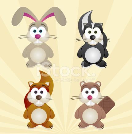 Conjunto DE 4 Animales Conejo Zorrillo Ardilla Castor