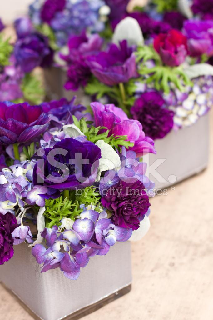 Purple Flower Centerpieces Stock Photos Freeimages