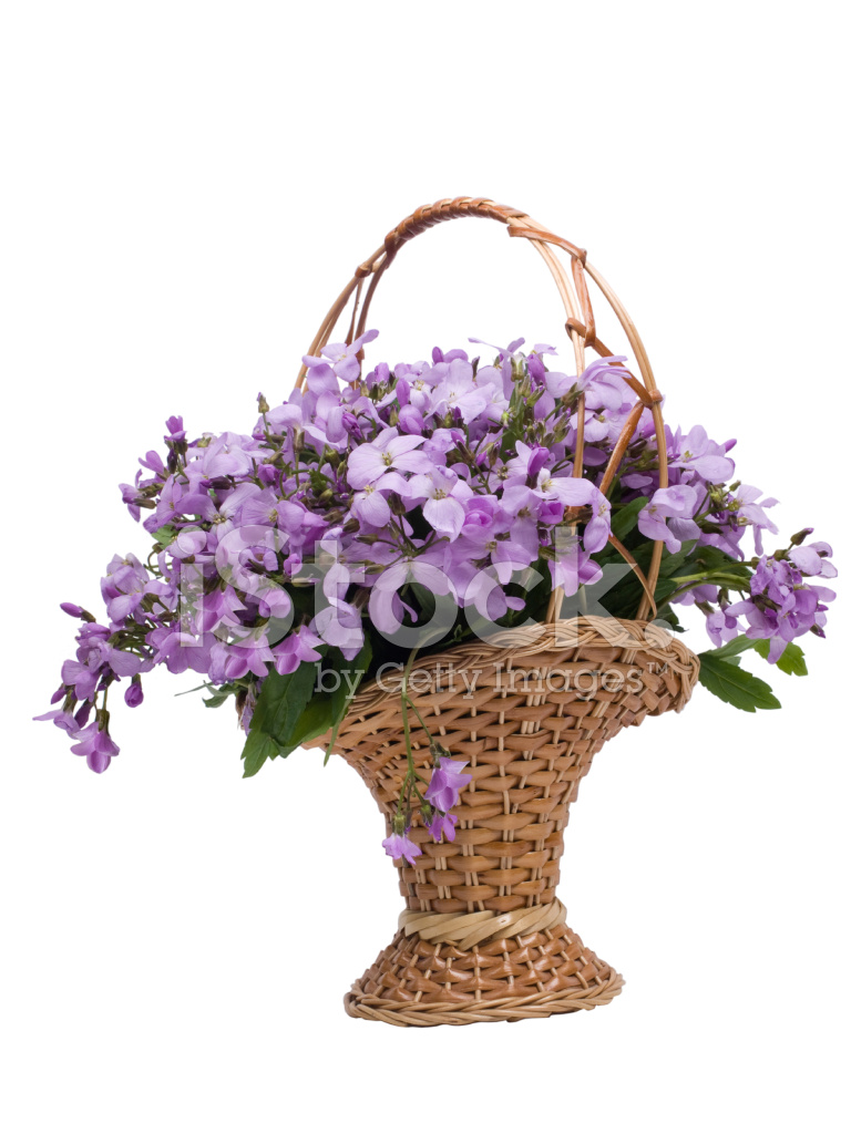 Beautiful Bunch Of Flowers In Basket On White Background Stock
