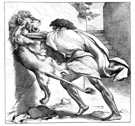 victorian bible illustration samson slays the young lion