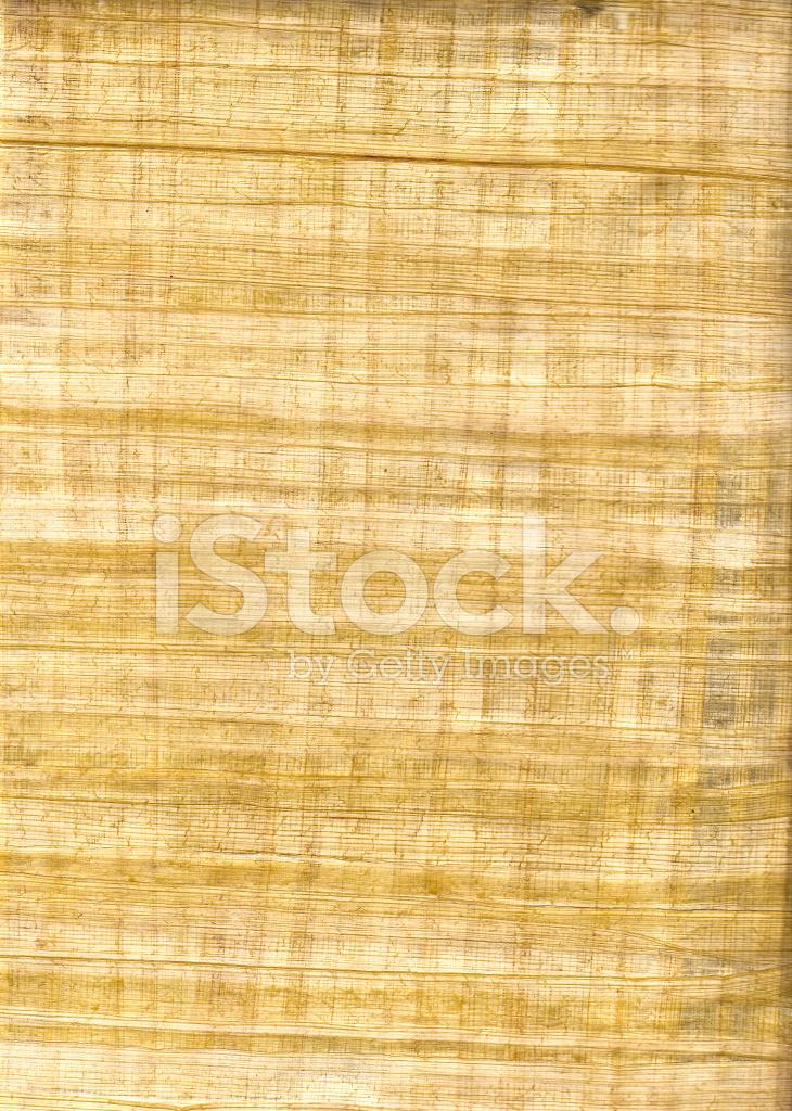Papyrus Paper Papyrus Paper Texture ...
