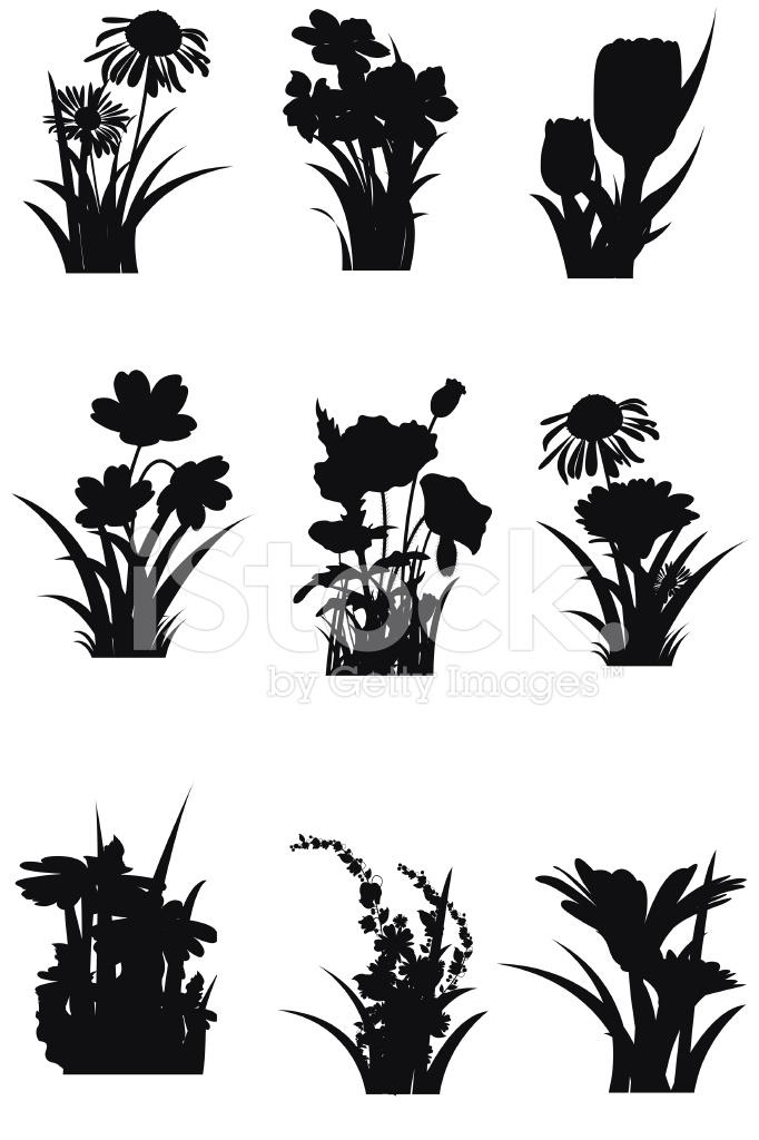 春の花のシルエット stock vector freeimages com