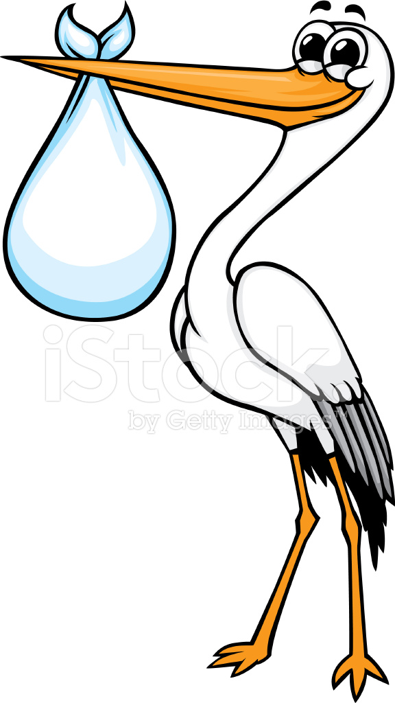 Cartoon Stork Stock Vector Freeimages Com