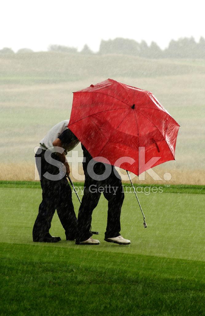 Golf şemsiye Yağmur Stok Fotoğrafları Freeimagescom