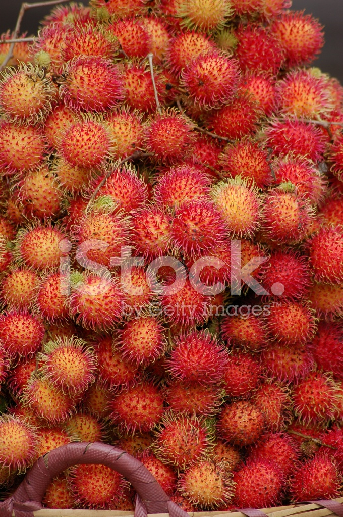 Rambutan Fruit Stock Photos - FreeImages.com