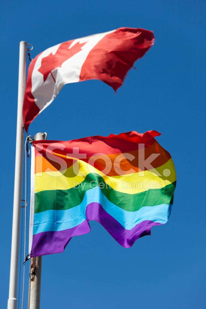 Gay clubs in houston texas