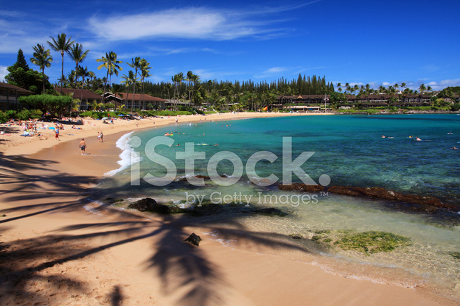 Schone Maui Hawaii Beach Ocean Resort Hotel Palm Baum Szene