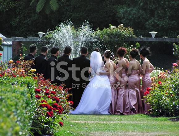 Matrimonio in giardini di rose fotografie stock freeimages.com