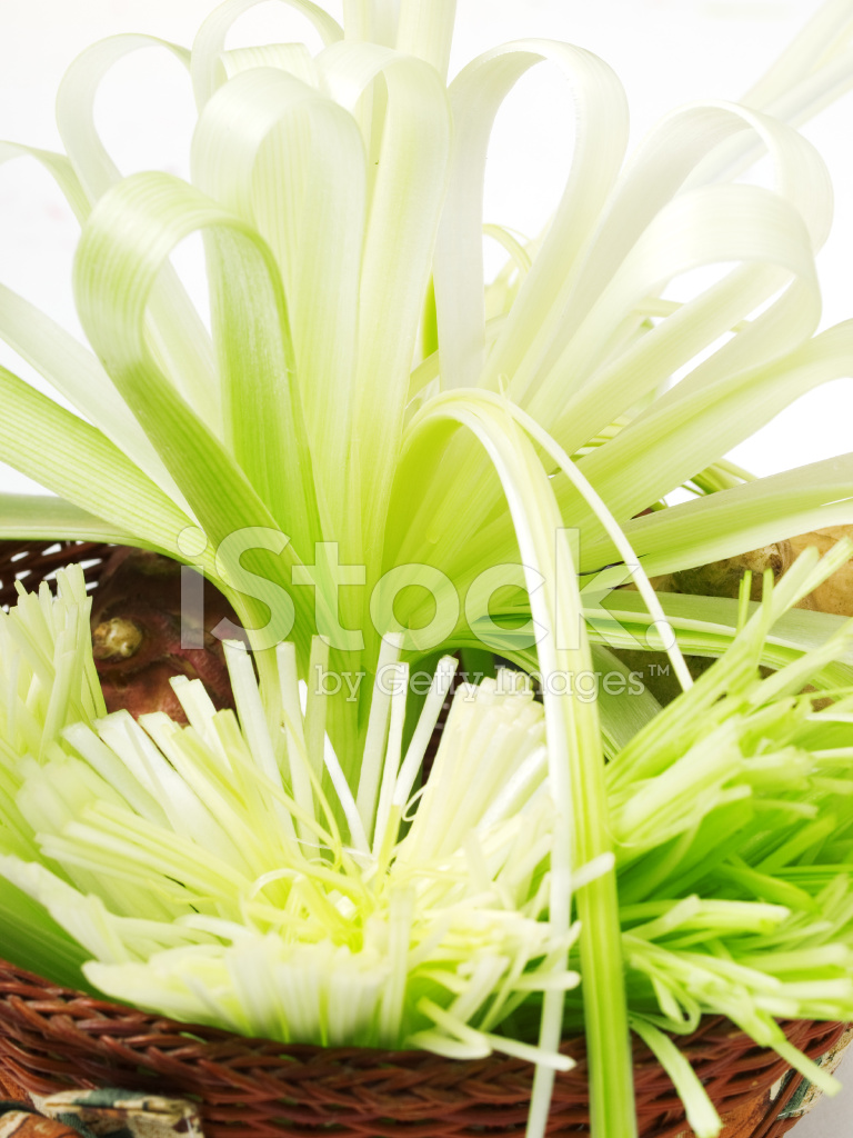 Spring Onion Made Like Flower Stock Photos Freeimages