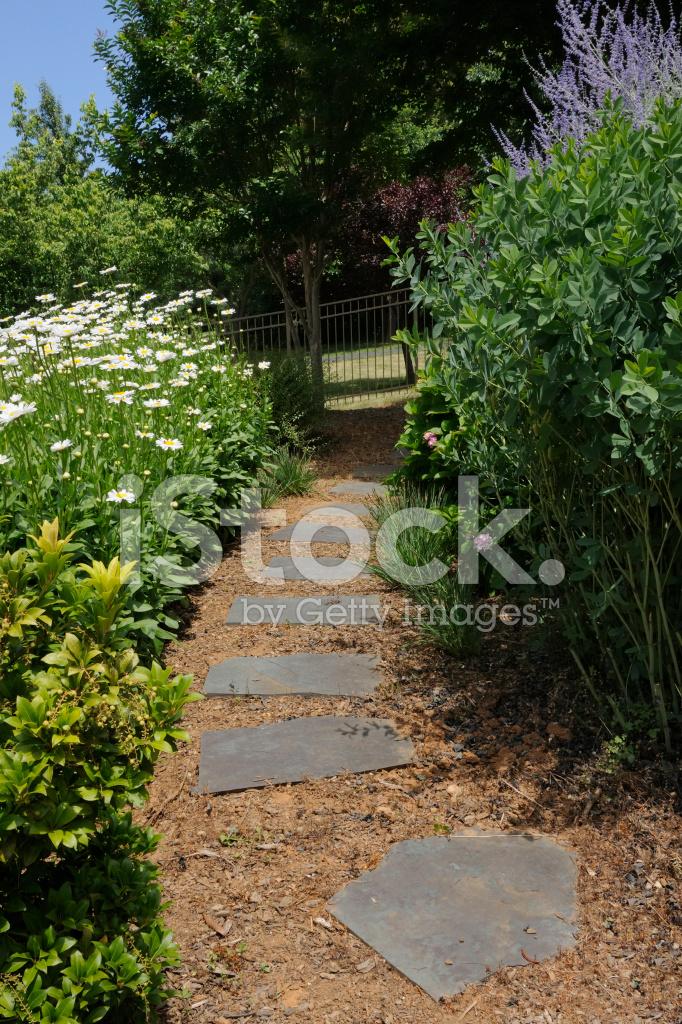 Sunny Garden Path Stock Photos - FreeImages.com