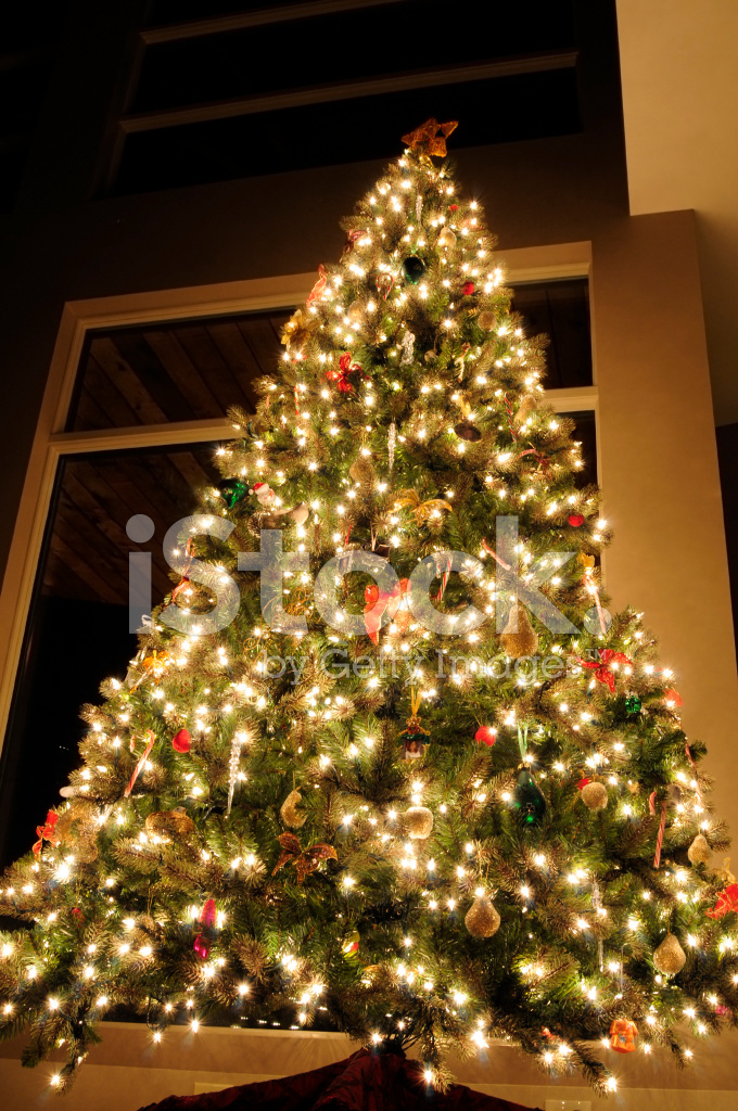 Christmas Tree Bows White.Christmas Tree With White Lights And Red Stock Photos