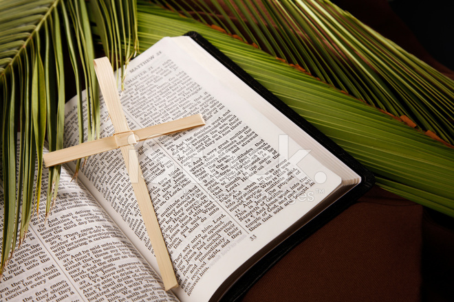 Palm Sunday Cross And Bible With Branches Stock Photos