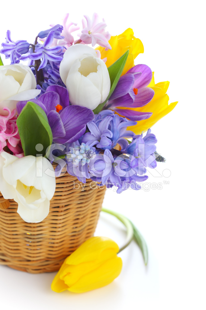 Bouquet of Spring Flowers IN Basket Isolated on White Background ...