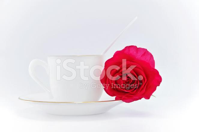 Tazza Di Caffè Con Rosa Rossa Su Sfondo Bianco Fotografie Stock