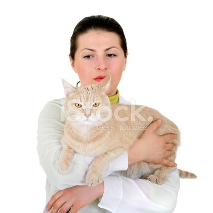 Cat breathing problems symptoms