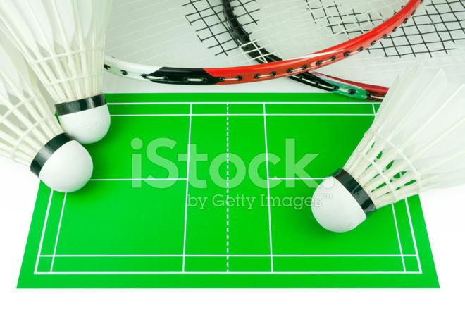 Badminton Rackets Shuttlecocks Field Drawing Stock