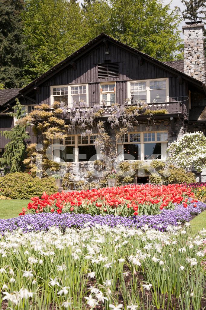Kolorowy Ogrod Kwiaty Zdjecia Ze Zbiorow Freeimages Com