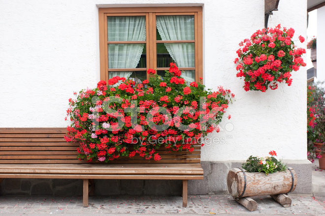 Geranium Blumenkasten Fenster Stockfotos Freeimages Com