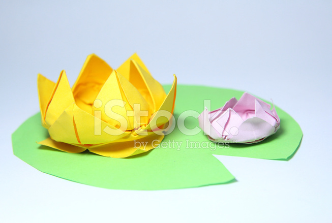 Premium Stock Photo Of Water Lily Origami