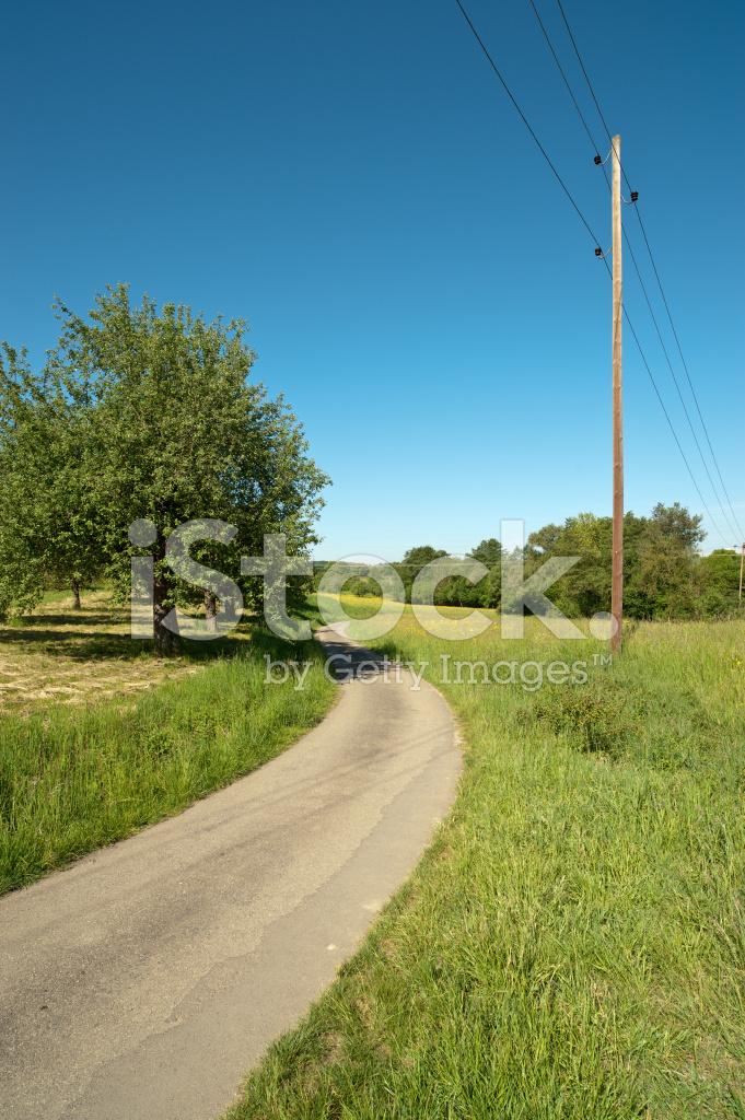 Telefonmast Mast IN Der Natur Im Frühling Stockfotos - FreeImages.com