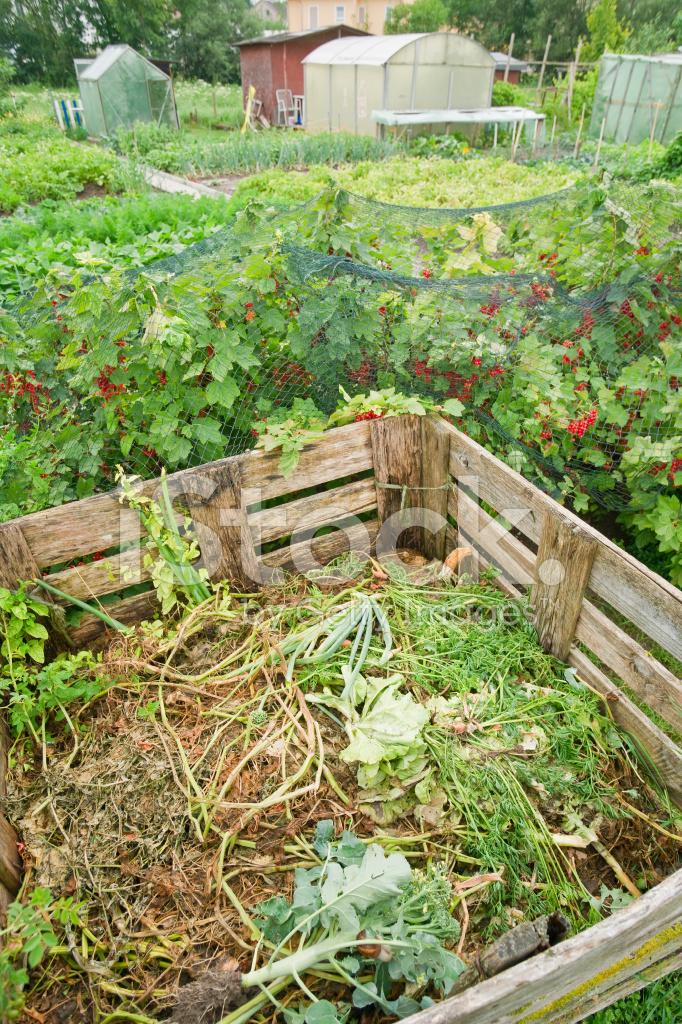 Bidone Del Compost