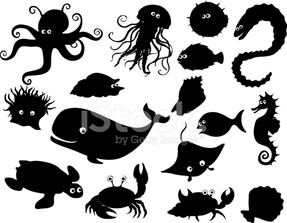 Sea Creatures Silhouettes Stock Photos FreeImagescom