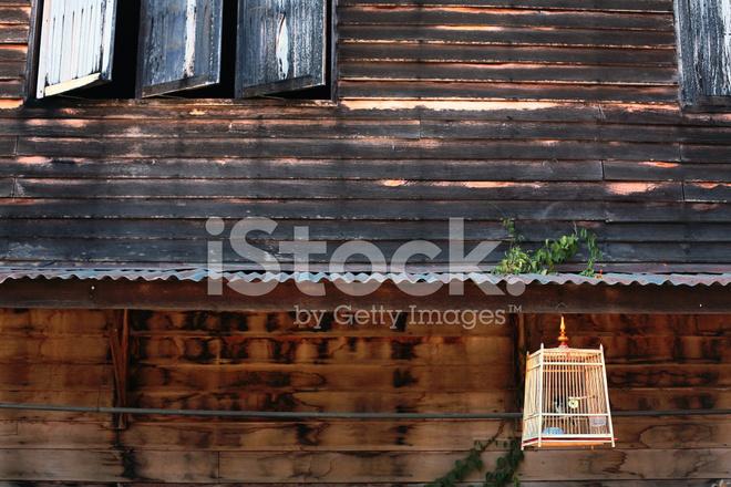 Vogelkooi In Huis : Vogelkooi vooraan huis u stockfoto dialga yahoo