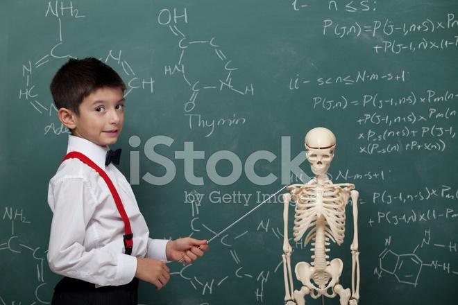 Little Teacher Teaching Human Anatomy Stock Photos Freeimages