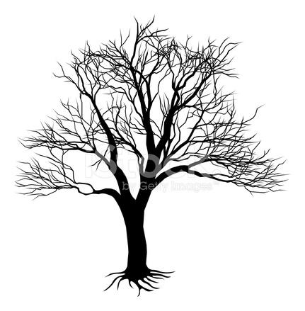 silhouette de l u0026 39 arbre nu stock vector