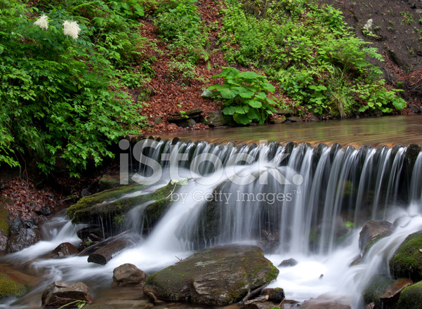 Waterval In Tuin : Tuin waterval stockfotos freeimages.com