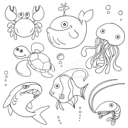Cartoon Marine Animals In Black And White 704664 on Cartoon Cookies