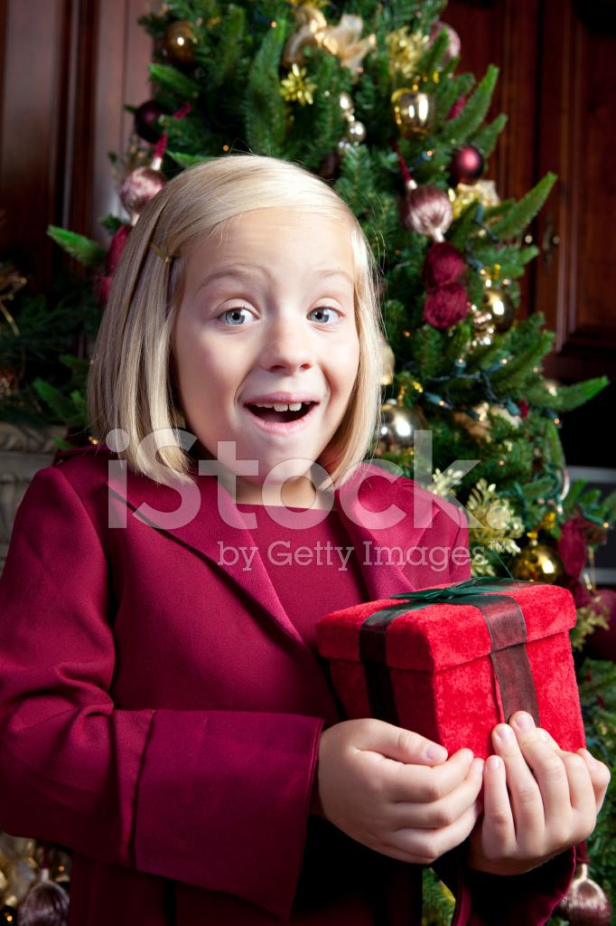Fröhliche Mädchen Hält Weihnachtsgeschenk Stockfotos - FreeImages.com