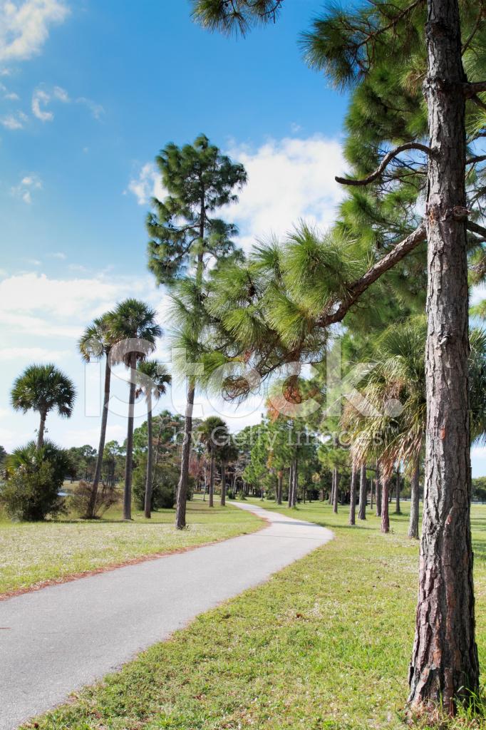 Jogging Palm Beach County