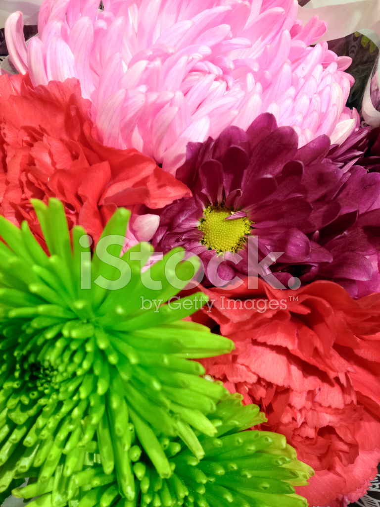 Close UP Spring Flower Bouquet IN Bright Colors Stock Photos ...