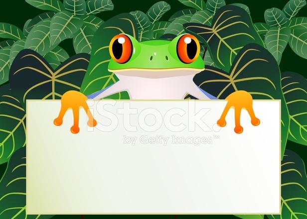 Cartone animato divertente rana con segno bianco stock vector