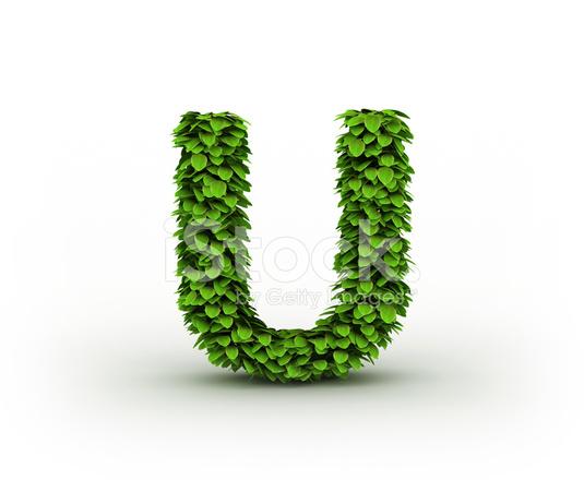 Letra U, Alfabeto DE Hojas Verdes Fotografías de stock - FreeImages.com