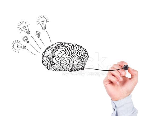 Human Hand Writing Brain On Whiteboard Stock Photos