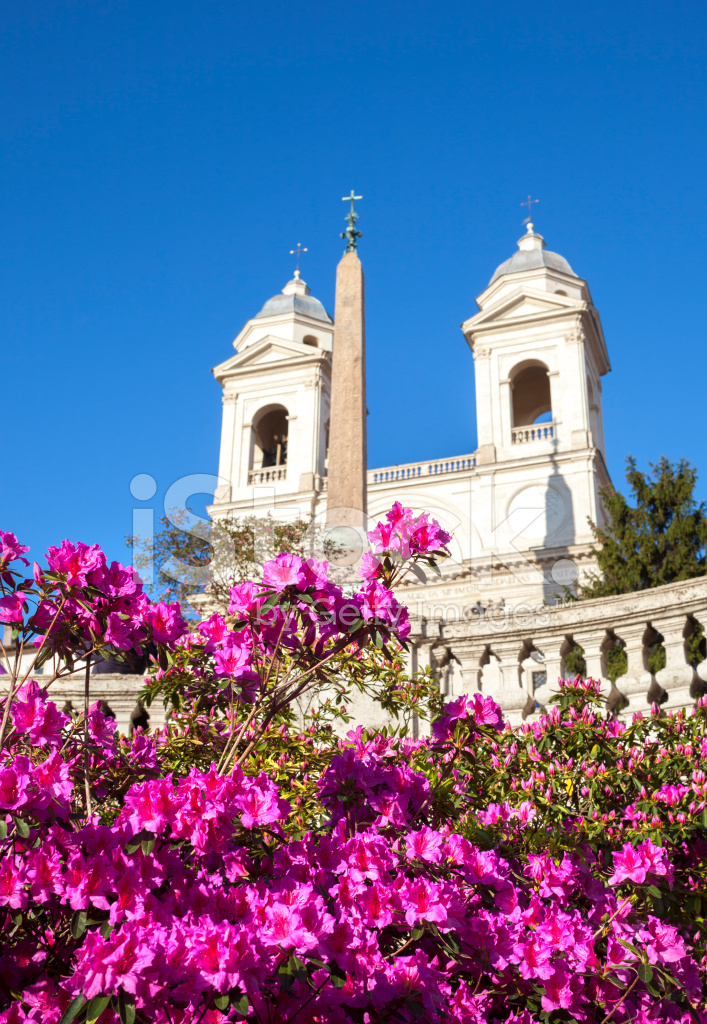 The Spanish Steps IN Rome With Azalea Flowers, Italy stock ...
