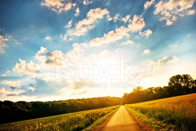 绿色的田野上阳光灿烂的日子