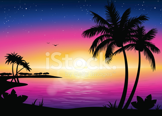 Sunset Beach Landscape With Palm Tree Silhouette Stock